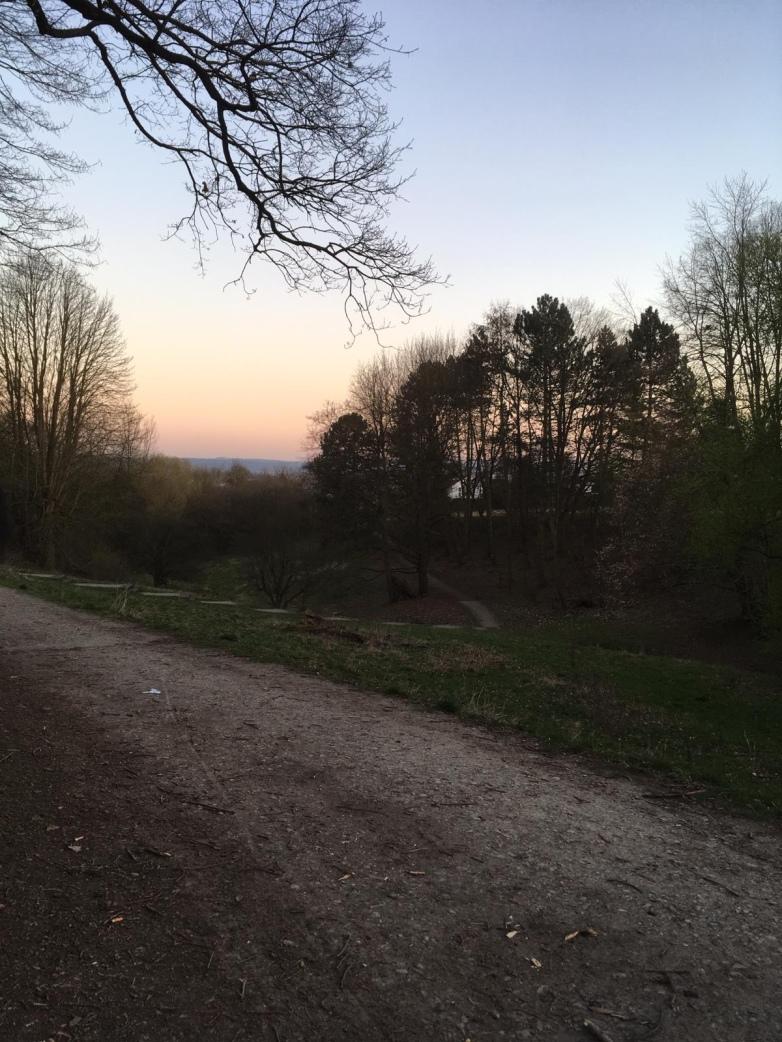 Bewaldeter Fußweg im Bossental Park bei Abenddämmerung